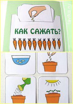 """Сажаем растения вместе с лэпбуком """"Мой сад""""! Файлы для распечатки"""