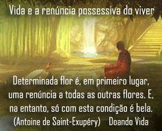 Vida e a equanimidade pela renúncia...  Para uma vida com equanimidade ou tranquilidade de espírito é preciso enfrentar a possibilidade conflitiva da renúncia. Aprender a renunciar faz parte da vida, do amadurecimento e da evolução humana. Neste caso, a renúncia significa alcançar a perfeita equanimidade. Determinada flor é, em primeiro lugar, uma renúncia a todas as outras flores. E, no entanto, só com esta condição é bela. (Antoine de Saint-Exupéry)