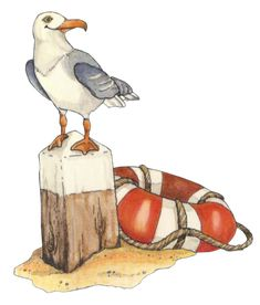 beach-seagull clip art