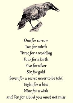 One for Sorrow Nursery Rhyme