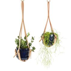 Knotted Leather Hanging Plant Holder on AHAlife