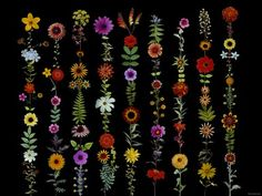 chelsea flower show poster - sharon elphick