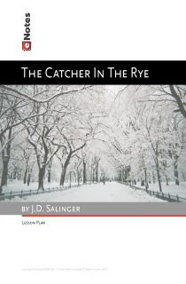 Catcher in the Rye questions? (Controversial questions of an essay im writing)?