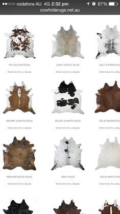Cow hide rugs                                                                                                                                                                                 More