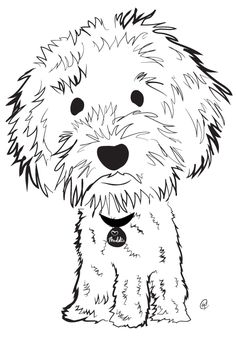labradoodle line drawing Google Search 1 LINE DRAWINGS for