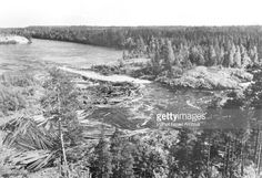 Floating timber down the Suna River, Karelia, USSR.
