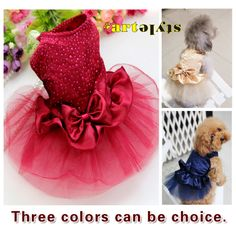 Free shipping pet accessory  , Pet Cat Dog lace clothes , bowknot  bule gold red Party Wedding dresses  , clothing for pets US $6.50 - 6.99