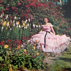 Vintage color postcard of a Southern Belle seated amongst the flowers in Florida's Cypress Gardens.