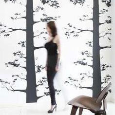 Onszelf Kids Wallpaper - Tree Photograph