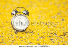 Concept clock and yellow flowers are bright yellow. Selective focus. - stock photo