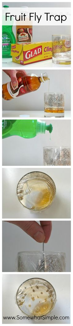 Make your own Fruit Fly trap- it really works!