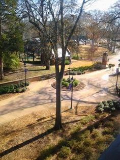 University of North Alabama Alabama, Woods, Sidewalk, University, Country Roads, Woodland Forest, Side Walkway, Walkway, Forests