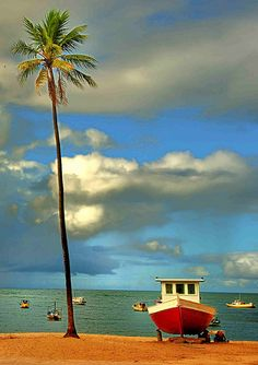 """Praia Do Forte. Salvador Bahía, Brasil. The word """"Praia"""" is similar to Spanish 'playa'..which means beach. I assume that this beach means """"Strong Beach"""" in Portuguese...the language of Brazil."""