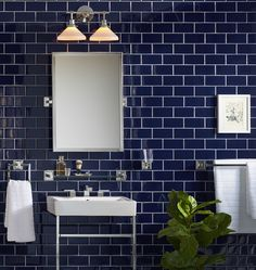 Rejuvenation's Winslow bathroom collection features shower fixtures, towel bars, soap dishes, shelves and more. Bathroom Hardware, Bathroom Faucets, Small Bathroom Inspiration, Shower Fixtures, Widespread Bathroom Faucet, Wall Sconces, Decoration, Light Blue, Dark Blue
