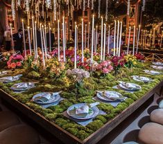 Romantic rose garden wedding planned by Norma Cohen Productions at the Pierre NYC. Event Planning, Wedding Planning, Nyc Hotels, Wedding Decorations, Table Decorations, Floral Decorations, Centerpieces, Green Wedding, Wedding Flowers