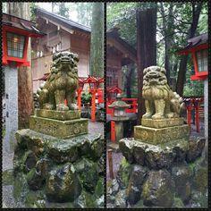 椿岸神社 / tsubakigishi