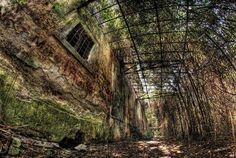 Scuderie reali villa Ada Savoia. #stables #decay #destruction #abandone #Nikon #Samyang #8mm #fisheye #RiccardoCuppini #Rome #Roma #HDR