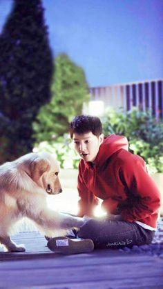 Adorable dog + adorable sjk = too much to handle Song Joong, Song Hye Kyo, My Love Song, Love Songs, Asian Actors, Korean Actors, Soon Joong Ki, Decendants Of The Sun, Park Bogum
