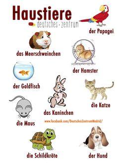 Tips and templates: Learn German for children - schule - kind Study German, Learn German, Learn French, Deutsch Lernen B1, Deutsch A2, German Grammar, German Words, German Resources, Deutsch Language