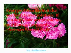 Every problem has in it the seeds of its own solution. If you don't have any problems, you don't get any seeds.  ~Norman Vincent Peale