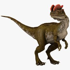 model: Description: This Dilophosaurus is a high quality model that will enhance detail and realism to any of your dinosaur rendering projects. The dinosaur has a fully textured, detailed design . Dinosaur Mask, Dinosaur Toys, The Good Dinosaur, Big Iguana, Dragons, Kids Indoor Playground, Animal Action, Dinosaur Pictures, Baby Dinosaurs