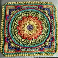 Sophie's universe with Crocodile flower