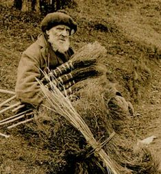 Uses of heather (historical photo of Scottish heather broom maker, 1900)...from Natural Homes dot org.