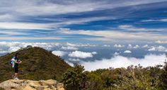 Near the Laban Rata camp, just got out of the forest and the clouds to start the alpine region of the mountain  #2ExplorersIn #Borneo #Malaysia #Travel  If you want to know more about our adventures, click on the image which will get you to our 2 Explorers In web site https://2ExplorersIn.com. Looking forward to see you there