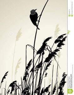 A bird sitting on the cane during the summer day Vector Image , Bird Silhouette Art, Grass Silhouette, Silhouette Vector, Landscape Pencil Drawings, Black Ink Art, Beginner Art, Africa Art, Mural Art, Murals