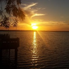 My hometown Oldsmar, Florida photo by kohco Oldsmar Florida, Clearwater Florida, Sight & Sound, Amazing Sunsets, Gulf Of Mexico, Cool Places To Visit, Places Ive Been, Filters, Natural Beauty