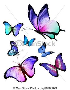 flying butterfly sketches - Google Search