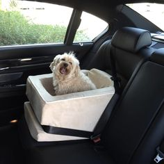 Animals Matter Too® Car Seat
