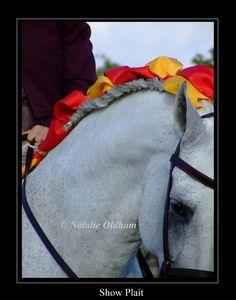 Love the ribbons! #horse #horses #braids #braiding #ribbons