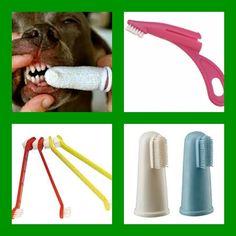 cepillo dental para perros