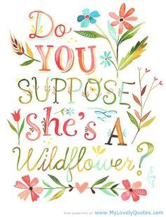 "do you suppose she's a wildflower | Do you suppose she's a wildflower"" | For My Ky"