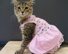 Pretty in Pink pet dog cat dress cotton top glitter cotton skirt slip with lace Swarovski crystals HANDMADE You pick size Help save a cat
