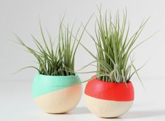Mint and Neon Red air plant duo // such a lovely colour-dipped touch of green #designtrend #productdesign