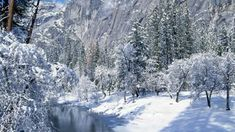 Прогулка по зиме под музыку Франсиса Лея (Francis Lai)