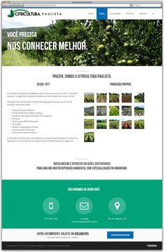 Criação de Site Responsivo para a floricultura Citricultura Paulista de Betim - página sobre