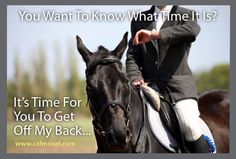 Free Webinar: Smart Social Media for Horse Professionals 2016 Funny Animal Memes, Funny Animals, Cute Animals, Horse Information, Time Management Strategies, Horse Games, Most Beautiful Animals, Horse Quotes, Horse Training