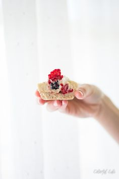Paleo Vanilla Bean, Berry Cheesecake Bites by Colorful Eats