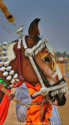 Marwari, Rajasthan, India. Michael Huggan Photography.