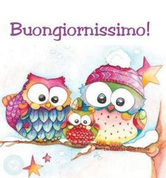 Buon giorno Lekker Dag, How To Wrap Flowers, Honeymoon Planning, Rabbit Baby, Have A Beautiful Day, Emoticon, The Hobbit, Happy Day, Good Morning