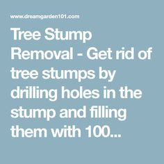 Tree Stump Removal - Get rid of tree stumps by drilling holes in the stump and filling them with 100...