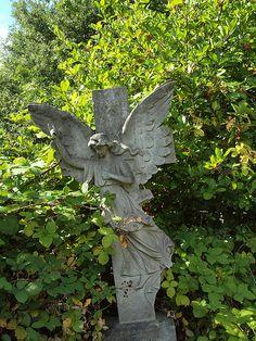 An Angel headstone in Brockley Cemetary