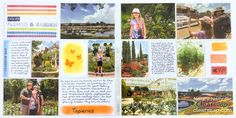 """The bright colorful pocket page layout of Disney's Epcot Flower & Garden festival uses ink to """"paint"""" custom journal cards."""