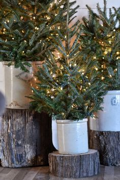 Farmhouse Christmas Home Tour 2017 How to preserve Christmas greenery and keep your tree looking great through the season.How to preserve Christmas greenery and keep your tree looking great through the season. Christmas Greenery, Christmas Porch, Farmhouse Christmas Decor, Primitive Christmas, Christmas Music, Outdoor Christmas, Rustic Christmas, Winter Christmas, Christmas Lights