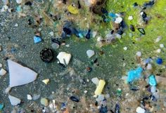 The solution to this problem isn't elegant, and there exists no silver bullet. The first step in solving the problem is to personally lower your plastic consumption. The next steps are to get involved in cleanups.