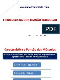 f009afc31 7 melhores imagens de Contração Muscular