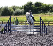 Team Equihunter: Get a first at The Royal Leisure Centre this weekend English Summer, Equestrian, Garden Sculpture, Wings, Horses, Outdoor Decor, Horseback Riding, Feathers, Show Jumping